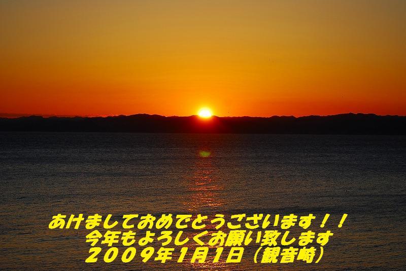 Sdsc_1034